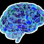 introvert og ekstrovert har forskellige præferencer for kommunikation. Brug den viden i din forretning som introvert og selvstændig