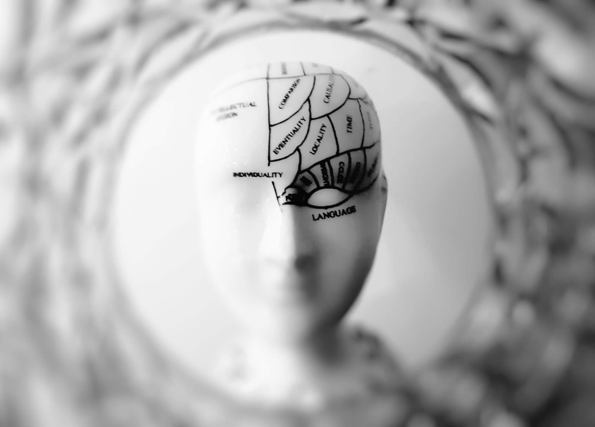 biologien bag det introverte temperament